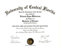 Bachelors of Science Degree
